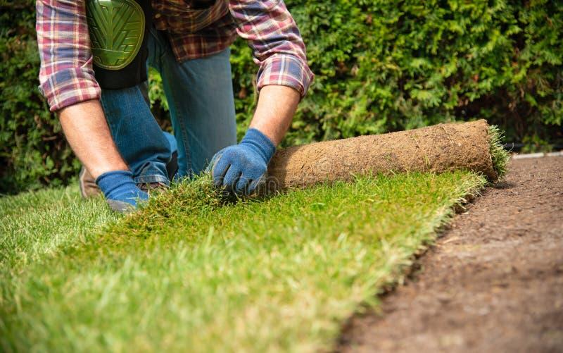Installando il tappeto erboso arriva a fiumi il giardino immagini stock libere da diritti