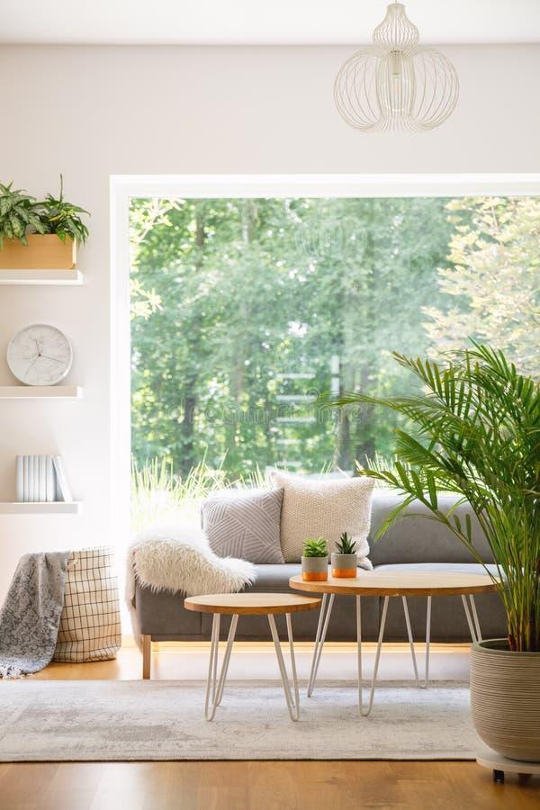 Installatie en houten lijsten in helder woonkamerbinnenland met grijs stock foto's