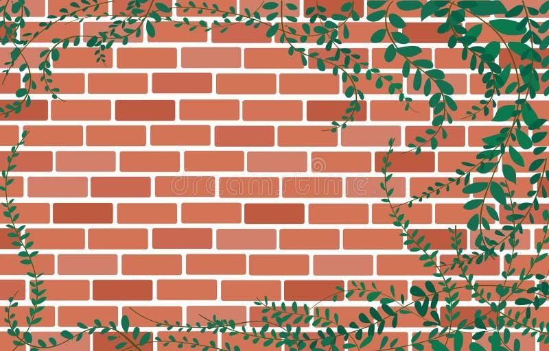Installatie van het Coatbuttons de Mexicaanse madeliefje op Muur van bakstenen en ruimte achtergrondkunstvector stock illustratie