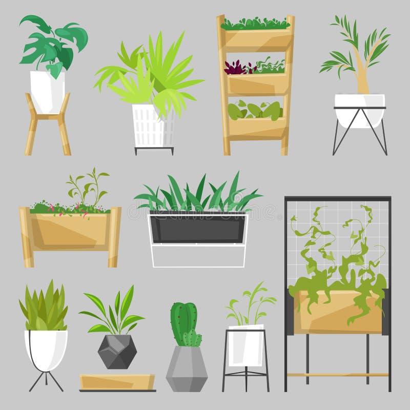 Installaties in binnen botanisch de cactussenaloë van bloempotten vector ingemaakt houseplants voor huisdecoratie met bloemeninza vector illustratie