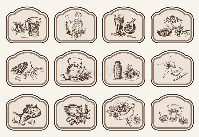 Installaties en kruiden in volksgeneeskunde stock illustratie