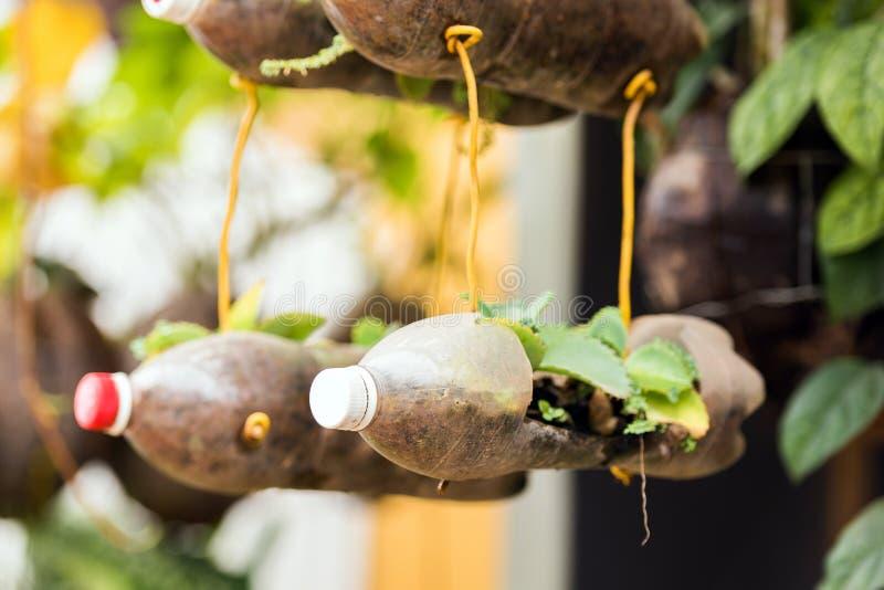 Installaties in plastic flessen, Luang Prabang, Laos Close-up stock afbeelding