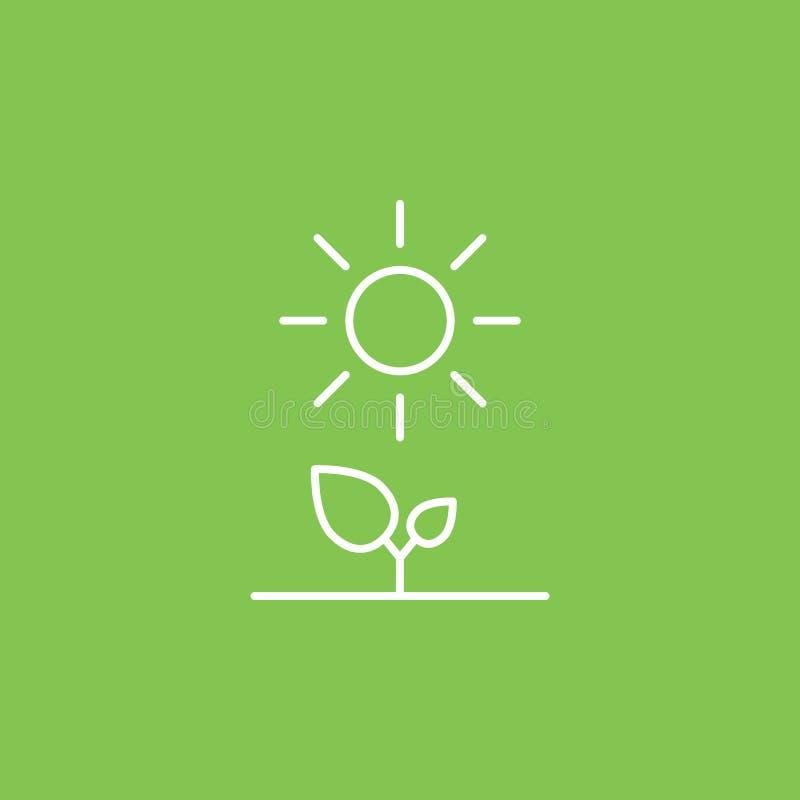 Installaties, zon, ecopictogram - Vector Eenvoudige elementenillustratie van UI-concept Installaties, zon, ecopictogram - Vector  royalty-vrije illustratie
