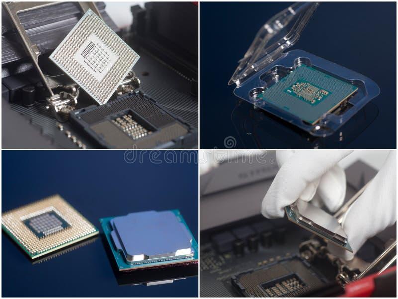 Installation av CPU på moderkortet Datorförbättring arkivbilder