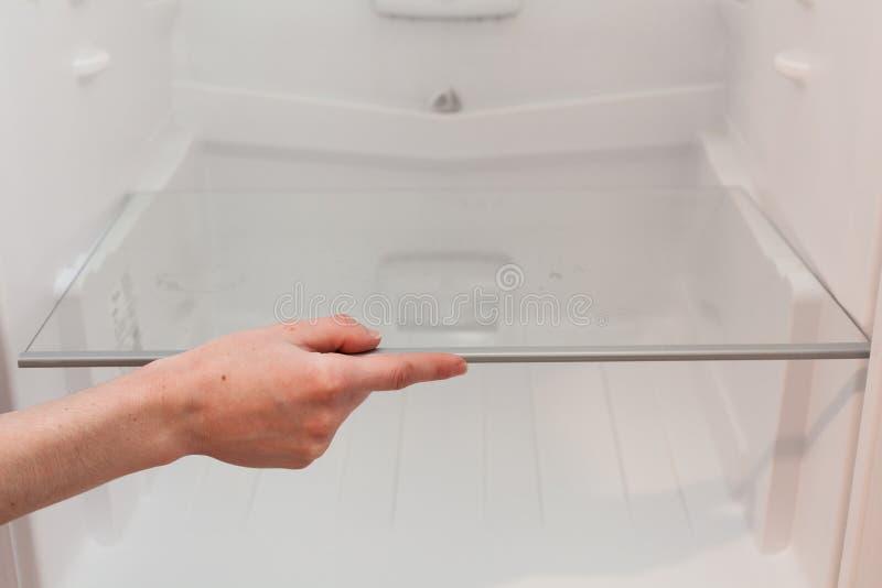 Installation av nya rena hyllor i ett tomt tvättat kylskåp Lokalvårdkylskåp för ung kvinna arkivfoto