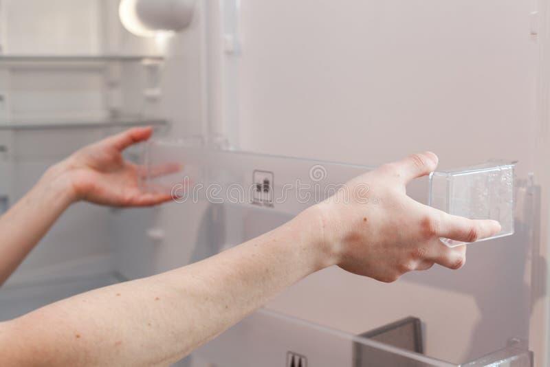 Installation av nya rena hyllor i ett tomt tvättat kylskåp Lokalvårdkylskåp för ung kvinna arkivbilder