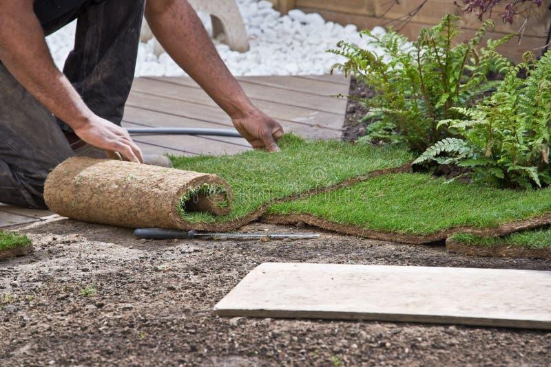 Installation av rullar av gräs royaltyfri foto