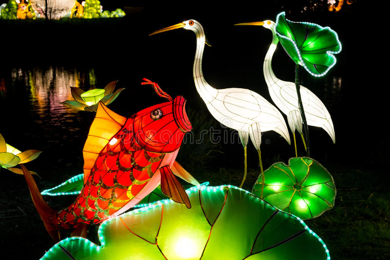Installation of coy fish and heron lanterns. London, United Kingdom - February 07, 2016: Magical Lantern Festival at Chiswick House And Gardens. Installation of royalty free stock photography