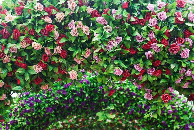 Installation sous forme de voûte avec des roses et des feuilles images libres de droits
