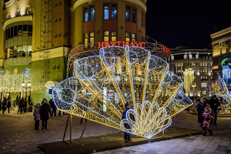 Installations de réverbère une soirée givrée d'hiver les vacances de Noël et de la nouvelle année images libres de droits