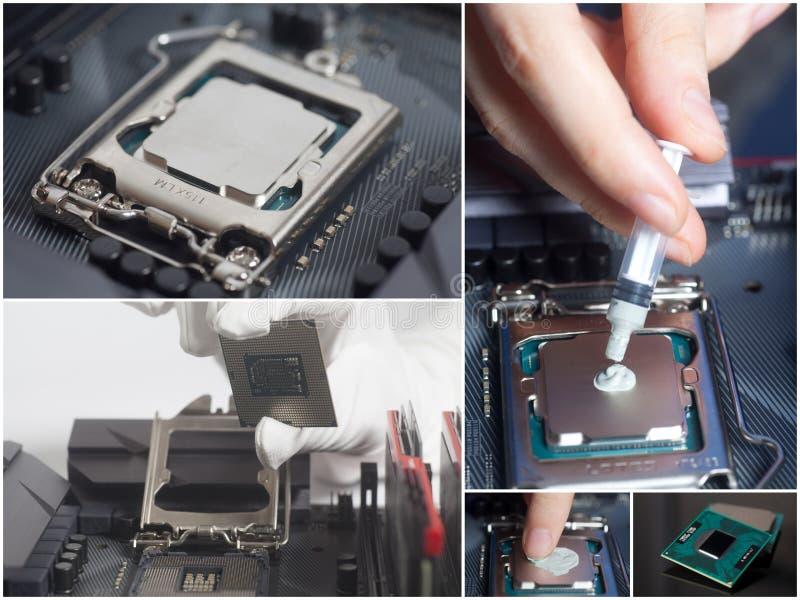 Installierung CPU in Motherboard und in das Auftragen der thermischen Paste Grafischer Adapter und Schraubendreher getrennt auf W lizenzfreie stockfotos