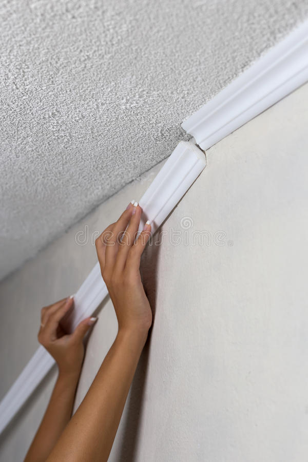 Installing crown molding on ceiling in room with painted wall. Fragment of molding, horizontal view. Installing crown molding on ceiling in room with painted stock image