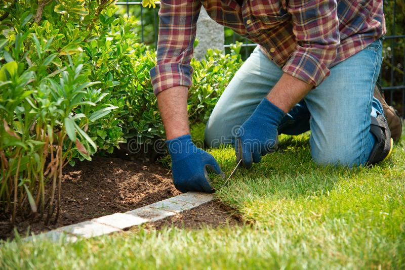 Installing turf rolls in the garden royalty free stock photography
