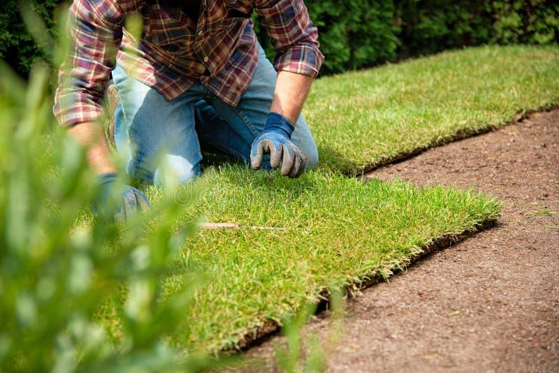Instalować muraw rolki w ogródzie obrazy royalty free