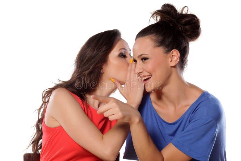 instreet di pettegolezzo delle ragazze del caffè che si siede comunicando due giovani della donna immagini stock libere da diritti