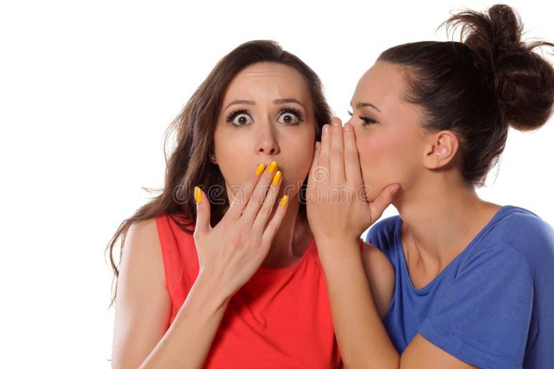 instreet di pettegolezzo delle ragazze del caffè che si siede comunicando due giovani della donna immagini stock