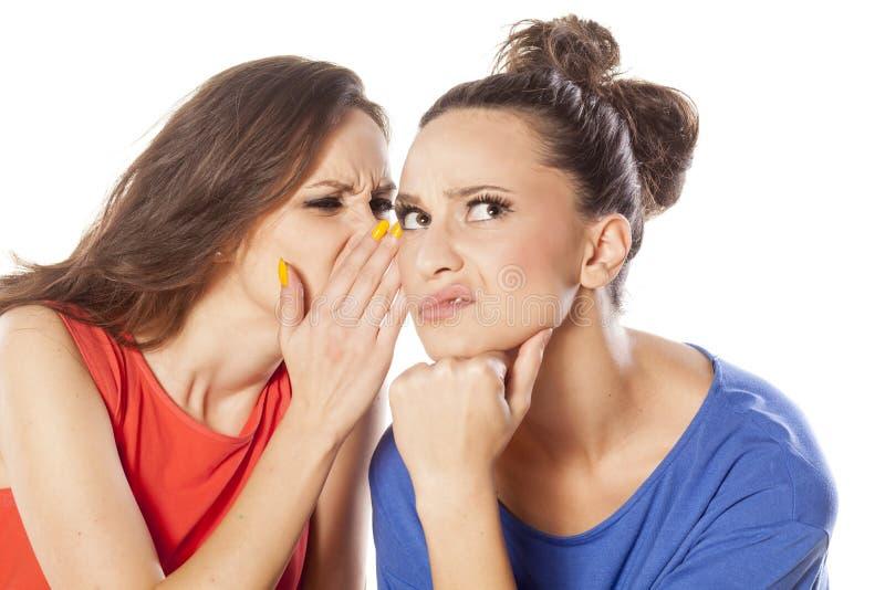 instreet di pettegolezzo delle ragazze del caffè che si siede comunicando due giovani della donna fotografia stock