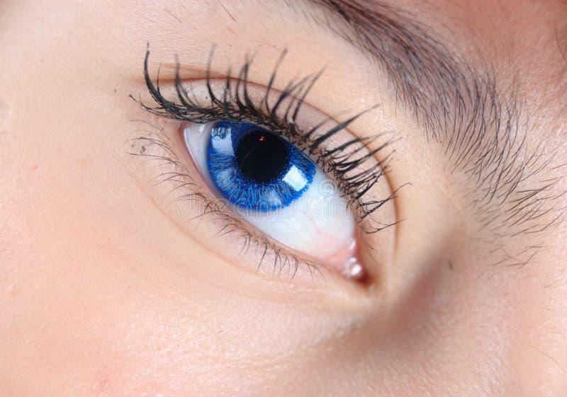 Instruction-macro de œil bleu image libre de droits