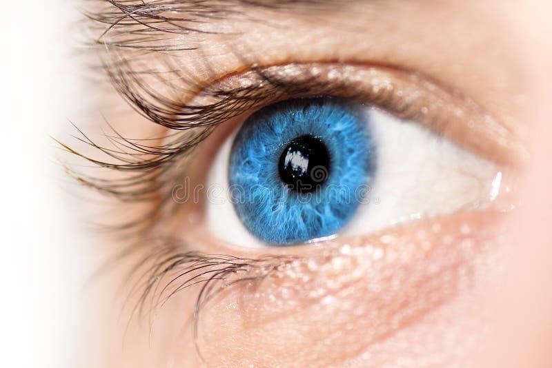 Instruction-macro de œil bleu photo libre de droits