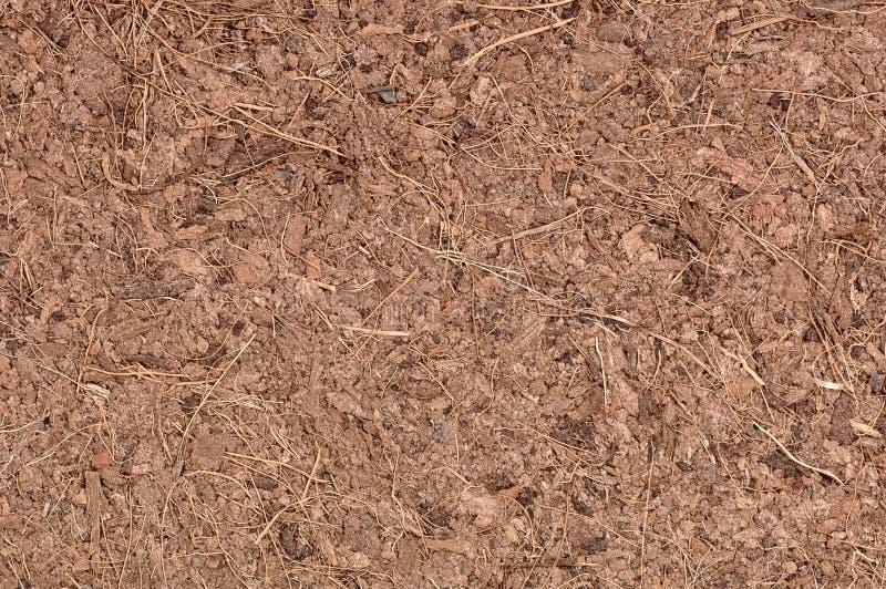 Instruction-macro de fibre de coco de noix de coco photo libre de droits