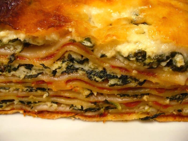 Instruction-macro de lasagne photo stock