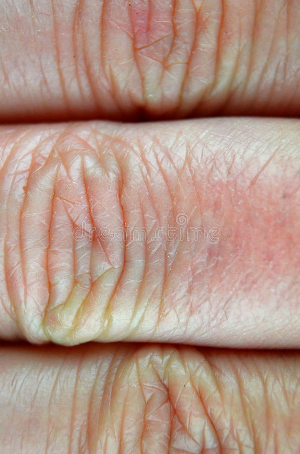 Instruction-macro humain de peau image libre de droits