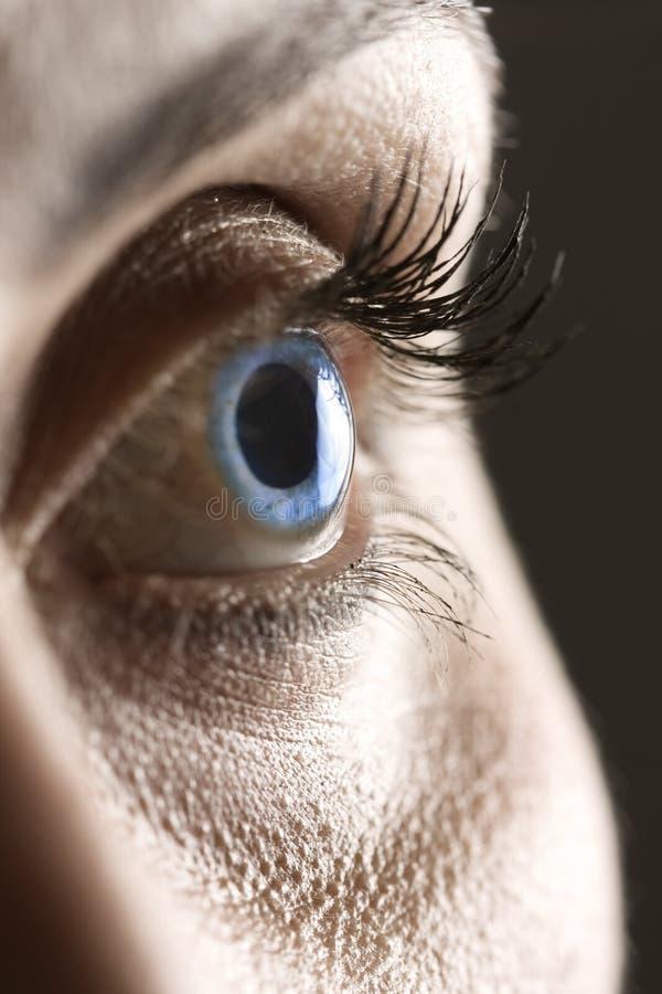 Instruction-macro sur le œil bleu photos libres de droits