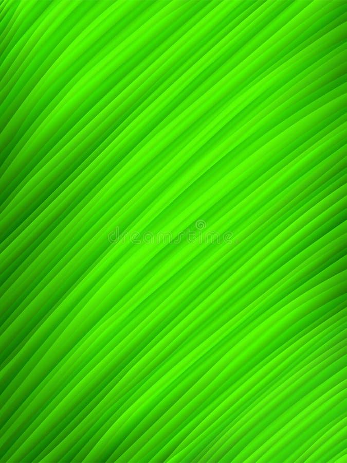 Instruction-macro vert de lame illustration stock