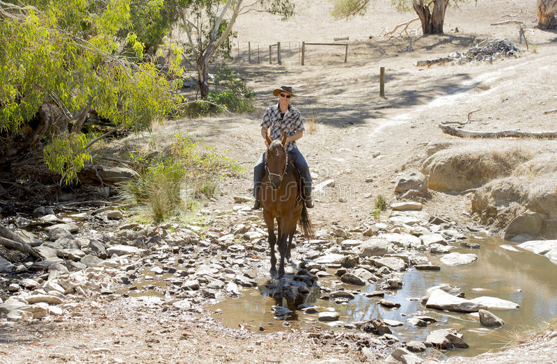 Instructor or cattleman riding horse in sunglasses, cowboy hat and rider boots. Young horse instructor or cattleman riding the animal wearing sunglasses, cowboy stock photography