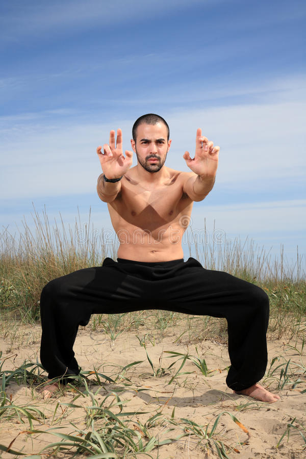 Instructor de los artes marciales fotos de archivo libres de regalías