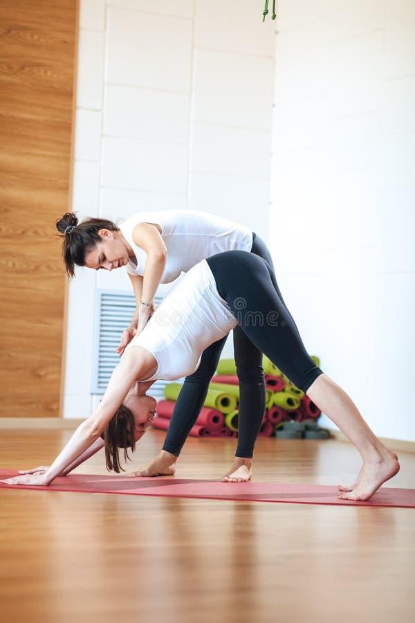 Instructor personal que ayuda a la mujer embarazada mientras que hace yoga fotografía de archivo