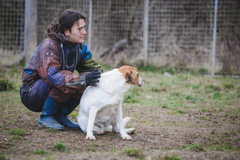 Instruktör och hennes hund i processen av socialization arkivbilder