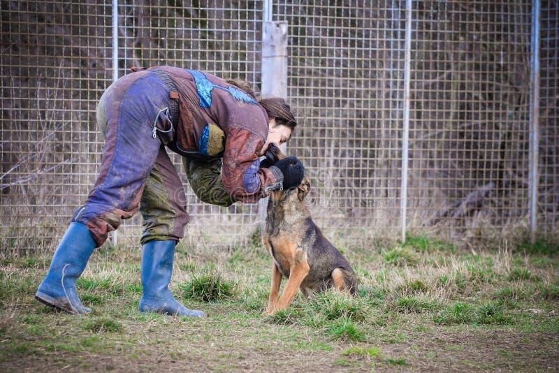 Instruktör och hennes hund i processen av socialization fotografering för bildbyråer