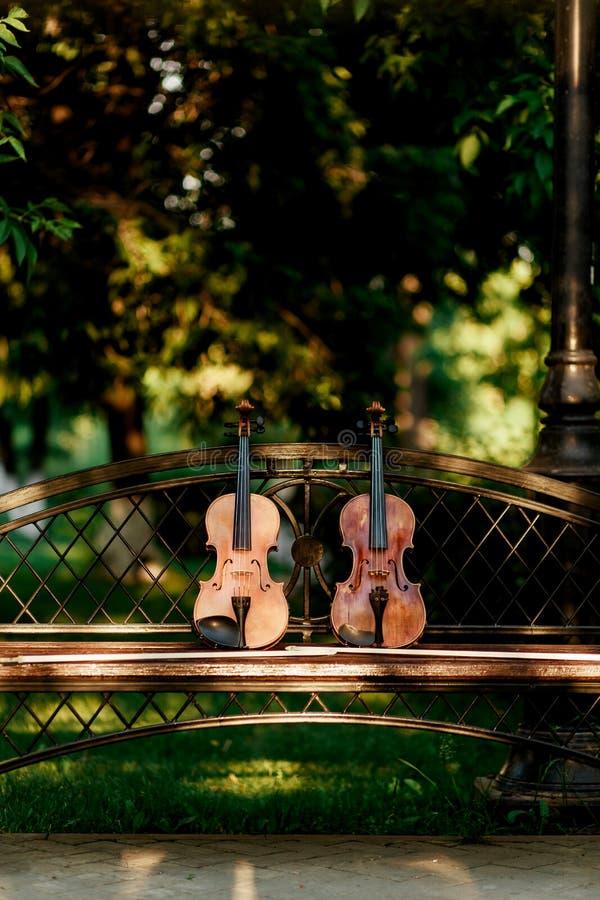 Instrument de musique de violon d'orchestre Violons en parc sur le banc photo libre de droits