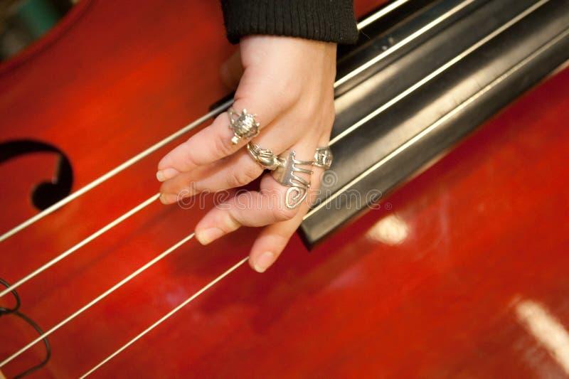Instrument musical de chaîne de caractères photo libre de droits