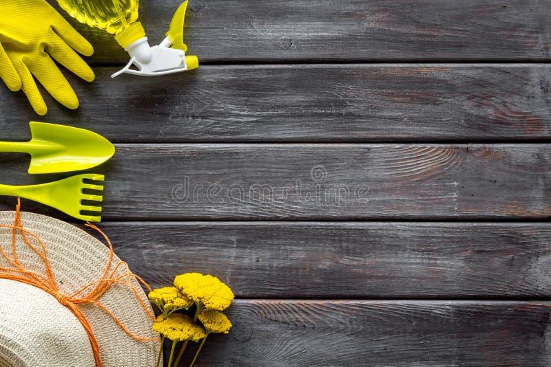 Instrumente für Gärtner auf hölzernem Hintergrund lizenzfreie stockfotografie
