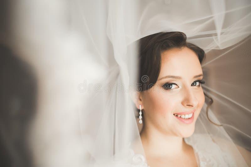 Instrumente für Schönheitschirurgie- und Make-upkosmetik lizenzfreies stockfoto
