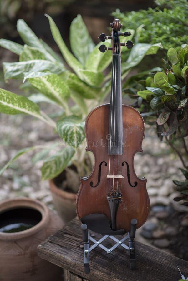 Instrumento cl?ssico do violino vertical com fundo natural imagens de stock royalty free