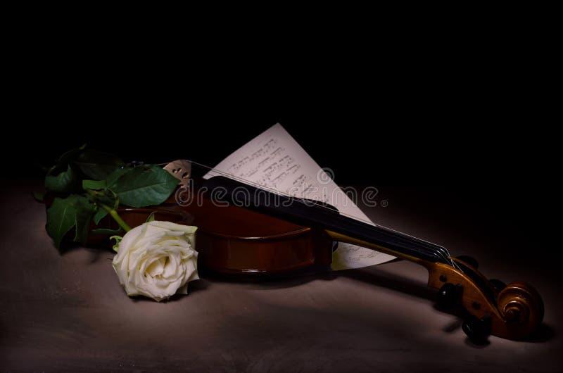 Instrumento de música do violino da orquestra com rosa do amarelo foto de stock royalty free