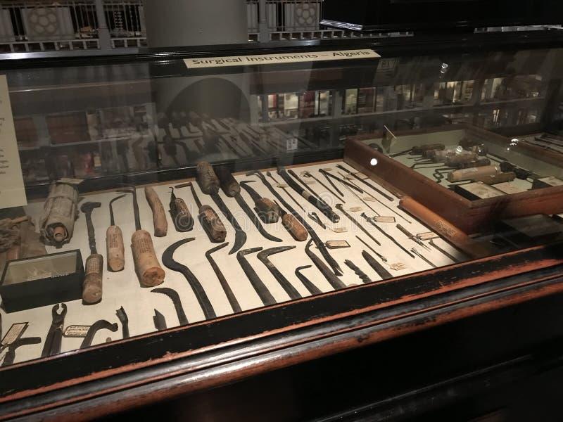 Instrumentos cirúrgicos indicados pelo tipo nos Pitt-rios museu, Oxford, Reino Unido fotografia de stock royalty free
