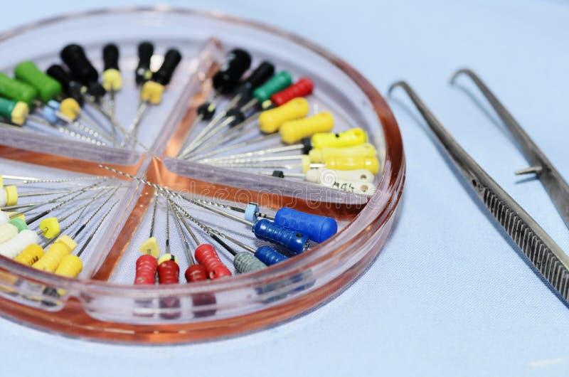Instrumentos da endodontia fotografia de stock royalty free
