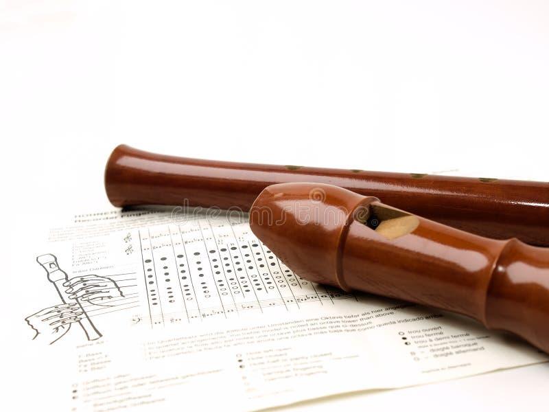 Instrumentos musicais ou registradores do Woodwind imagens de stock royalty free
