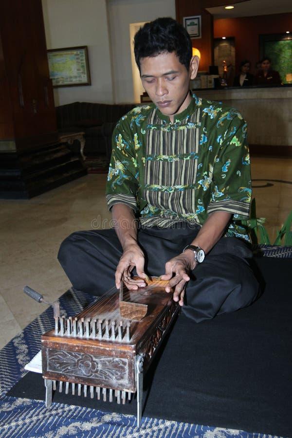 Instrumentos tradicionais imagem de stock