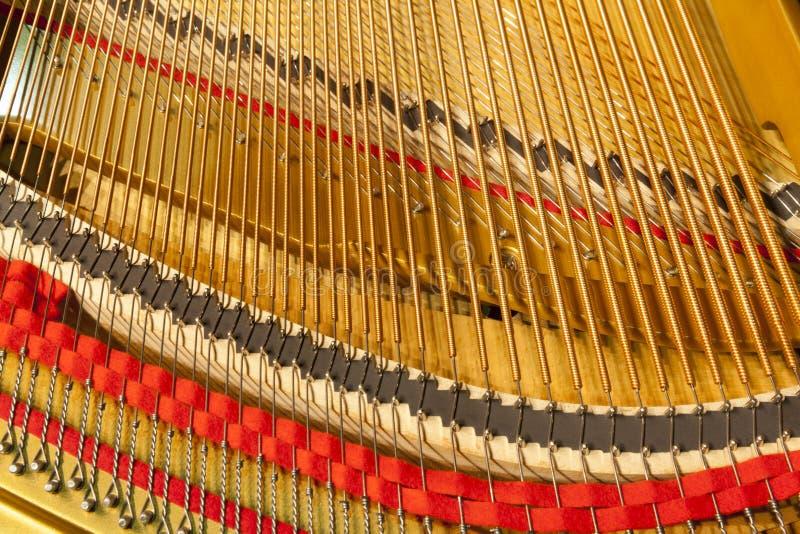16 instrumentu musical obrazy royalty free