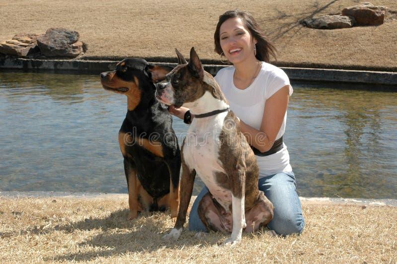Instrutor de cão foto de stock royalty free