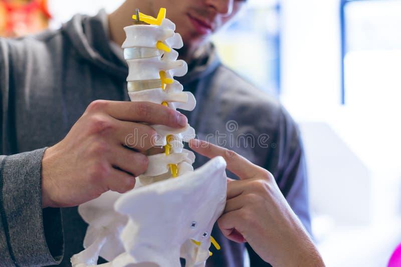 Instrutor masculino que explica sobre a coluna espinal à fêmea atlética no fitness center foto de stock royalty free