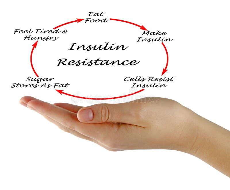 Insulinowy opór zdjęcie royalty free