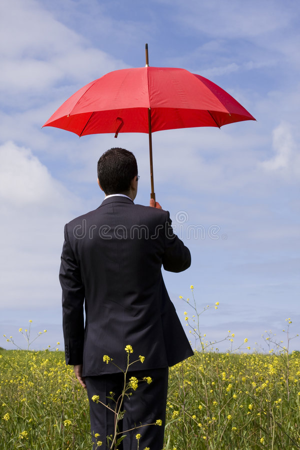 The Insurance Agent Stock Photography