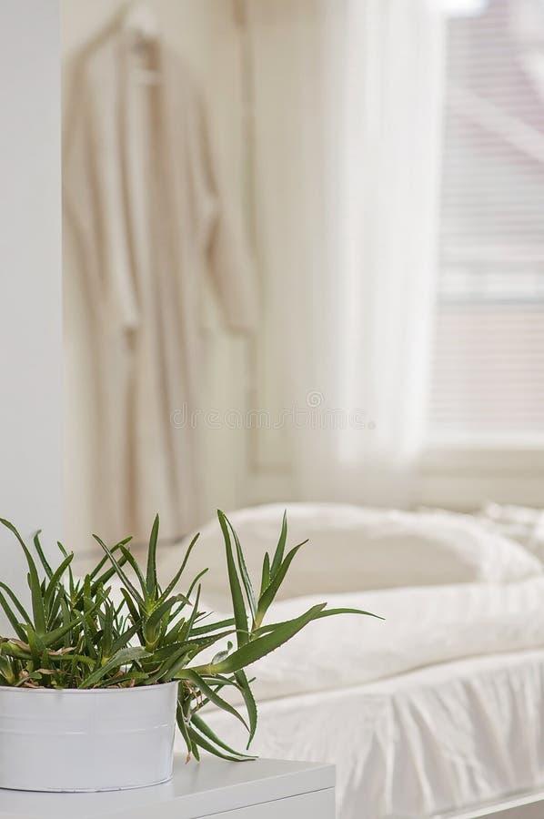 Intérieur à la maison de invitation de chambre à coucher avec doux, luxueux et harmonio images libres de droits