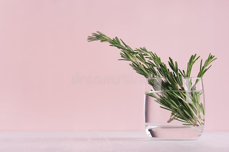 https://thumbs.dreamstime.com/b/int%C3%A9rieur-%C3%A0-la-maison-en-pastel-rose-clair-mol-moderne-avec-plante-verte-sur-le-fond-bois-blanc-117775435.jpg